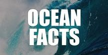 Ocean Facts / Explore the mysteries of the ocean with our list of fascinating ocean facts, videos, and infographics.