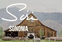 Sonoma Dream Wedding