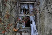 Windows / by Tina Ehler