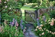 Gardens / by Janice K R