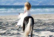 I love the unicorns ♥