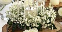 Spring Centerpieces / Beautiful centerpieces with bird cages