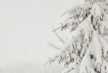 essence of winter