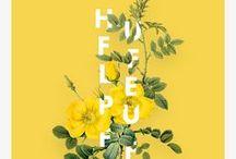 Hufflepuff Pride♡