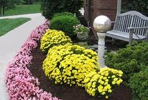 Landscape Ideas / You'll find landscape design ideas, garden tips and nifty ways to make the outdoors as comfortable as indoors.