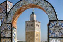T / 2004 Tunesie streek