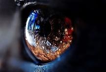 Eyes Like Gems