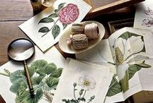 HERBARIUM / trees, shurbs, herbs, anatomy of plants, flowers, fruits and everything of FLORA <3 / by Blue