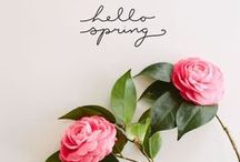 Springing to LIfe / All things fresh, new and spring related