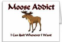 Moose and deer