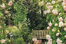 Ihanuuksia puutarhaan