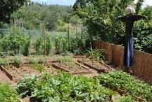 Get gardening