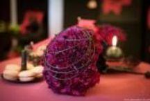 Dianthus - karafiát / myslím, že je už na čase vrátit karafiát mezi oblíbené květiny