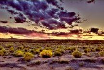 Beautiful Albuquerque Skies
