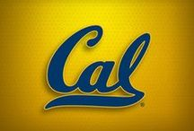 California Golden Bears Cornhole