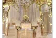 Wedding in Spring