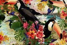 Patterns + Prints / by Stylemology .com