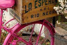 bicicletas con encanto