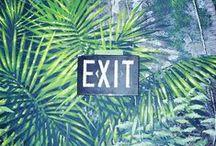 Hot Tropics / by Stylemology .com
