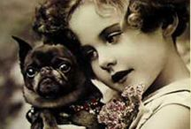 Dogs / by Margaret Tice
