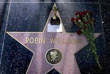 Hollywood Movie Star  / Deaths