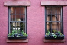 Window boxes and gardens / by Maeve Thompson