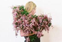Flora / by Stephanie Browne
