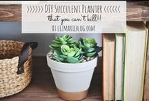 DIY {Flower Pots} / by Hannah Hutslar @ Lovely Little Life blog