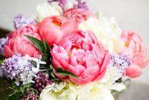 Flowers / by Megan Shilobrit
