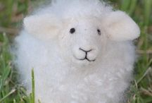 Sheepish friends