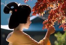 Floating world / Maiko, Geiko and other flowers