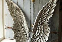 Angels / by suemi nakamura