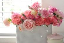 Beautiful Arrangements / Flower arrangements in all shapes and sizes. Get some inspiration here...