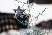 Christmas Trees & Decor / Christmas trees in all shapes and sizes