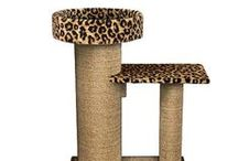 Pet Products / Featured products of the week for your cat or dog available from www.softpaws.com. Order one of these fun products with your next Soft Paws orders!  #softpaws