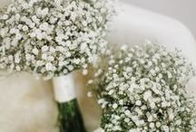 Gypsophila / Baby's Breath wedding