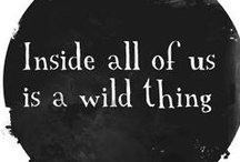 Take a walk on the wild side / Library are full of wild and wonderful things. These are just a few... / by Libraries: where the wild things are Taking the Lead