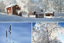 Sweden / by Raquel Sed