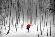 Lovely pics :)