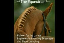 ..~*The Equestrian*~.. / The latest Big News from Eventing, Dressage, and Show Jumping