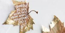 s e a s o n ☆ A U T U M N / Herbstliche Deko und schönes für den Herbst - Dekoration, Inspiration und Fotografie