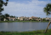 Mirasol Country Club real estate / Mirasol Country Club is a newer Palm Beach Gardens club with nearly 1,200 homes, 2 golf courses, pool, tennis courts and fitness center.  Follow my daily blog postings on the real estate market at: www.coastalflrealestate or for more videos on this area visit www.youtube.com/richardsites