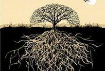 Stromy | Trees