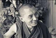 Lama Zopa Rinpoche Quotes