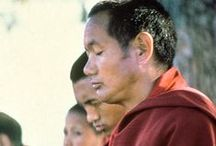 LYWA Monthly eLetters / Sign up for a monthly eLetter from LYWA filled with Dharma news and featuring a newly published teaching by Lama Yeshe or Lama Zopa by going here--> lamayeshe.com/monthly-e-letter
