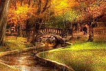 autunno//////////// / il grande fascino della più bella stagione dell'anno                 la piu' bella stagione dell'anno. colori,sapori,paesaggi infiniti e bellissimi  l