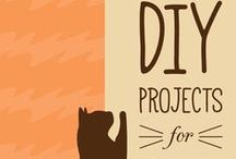 DIY for your feline / Easy projects to make life with your cat better. Cat toys, cat trees, cat beds and more :)