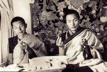 The Lamas in Elephant Journal / Dharma teachings from Lama and Rinpoche for the Elephant Journal community