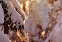 Winter Magic / ... winter wonderland