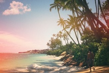 I dreamed a Summer Paradise